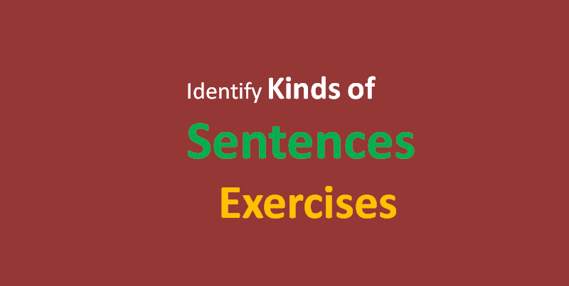 identify the kinds of sentences exercises, simplifyconcept.com